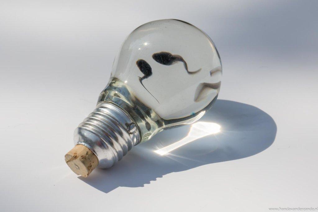 kikkervisjes-in-lamp-033.jpg